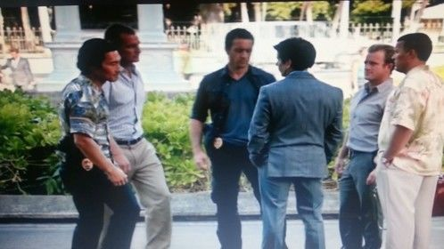 Hawaii five - 0 as a lawyer