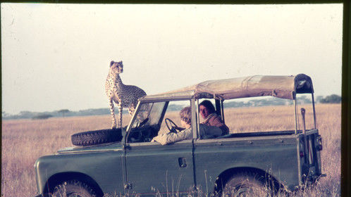 Me in Serengeti filming cheetah ...