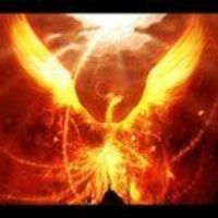 Phoenix Mangus