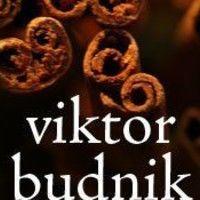 Viktor Budnik