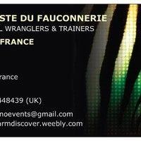 Artiste Du Fauconnerie (Animal Trainers)