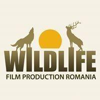 Wildlifefilm Romania