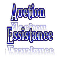 Auction Essistance