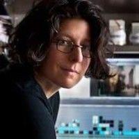 Stefanie Dworkin