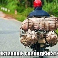 Makaed Vasilij