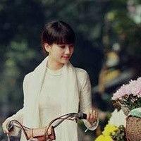 Ha Van Dong