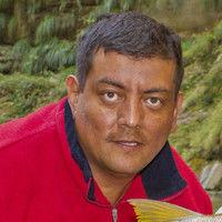 Jimmy Cristian Moya Cabrera