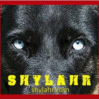 Max Shylahr