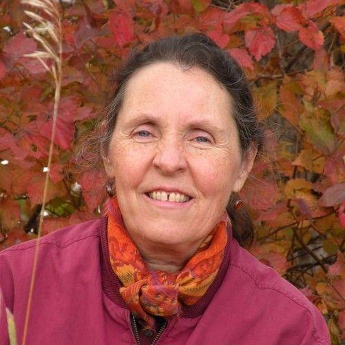 Marisha Chamberlain