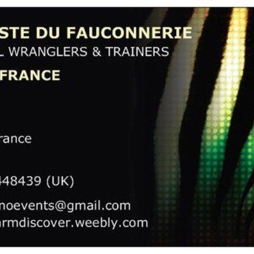 Artiste Du Fauconnerie (Animal Trainers)