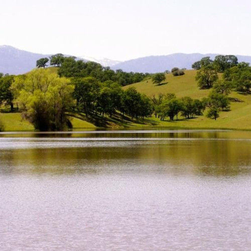 Film Financier