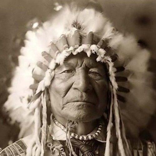 Chief Mojo