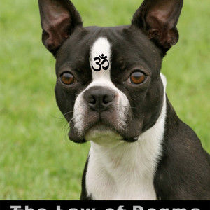 THE LAW OF DOGMA