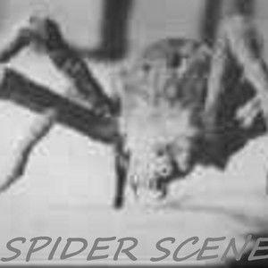 Spider Scenes