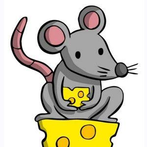 Mouse Vs. Rat