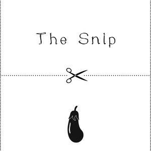 THE SNIP