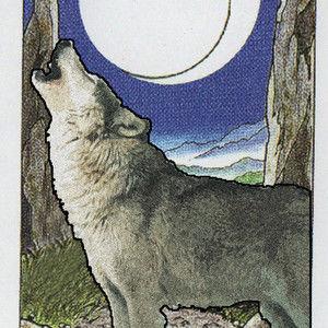 Tarot of the Spirit Wolf