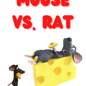 Mouse vs. Rat