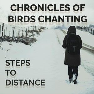 Chronicle of birds chanting