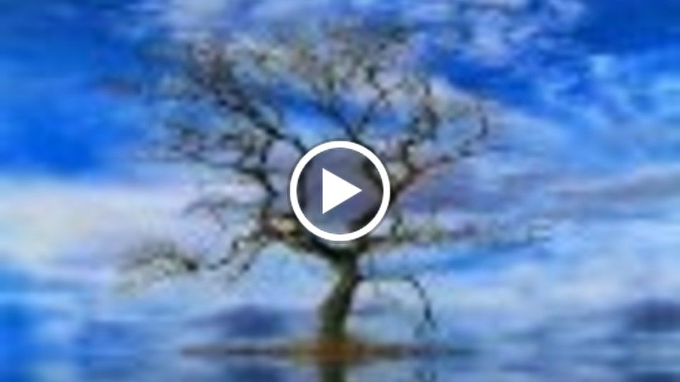 Longtime Live-Ambient-Guitar-World-New Age-Healing Music