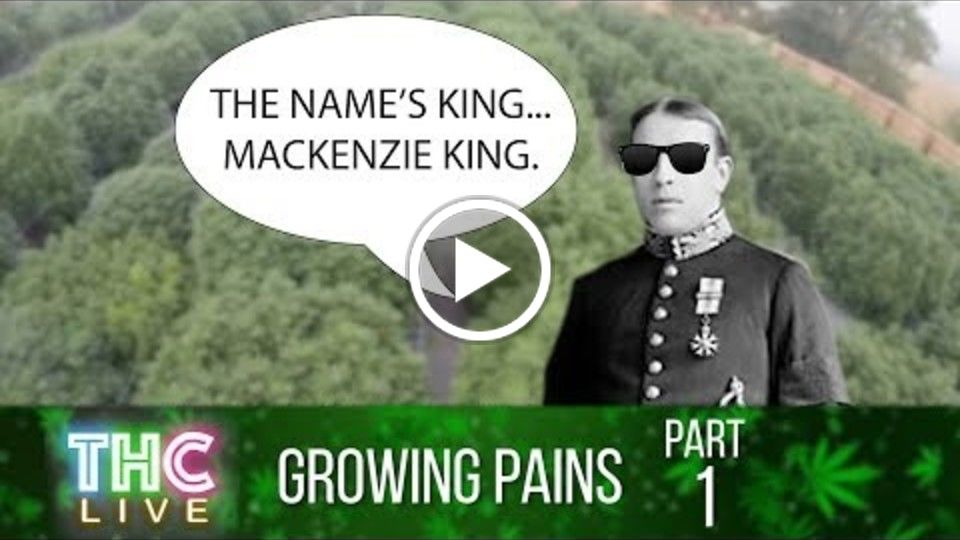 Growing Pains #1 | History of Cannabis