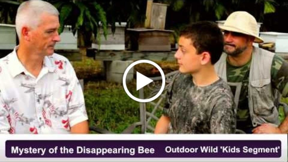 Mystery of the Disappearing Bee  (Outdoor Wild Kids Official video)