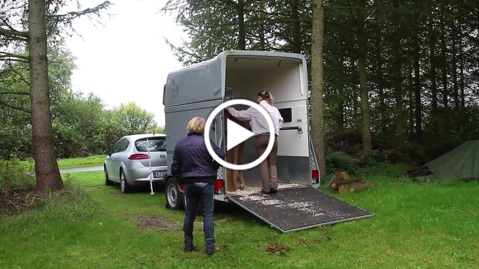 A film about a horse that didn't want to be loaded.   HD720p25.mp4