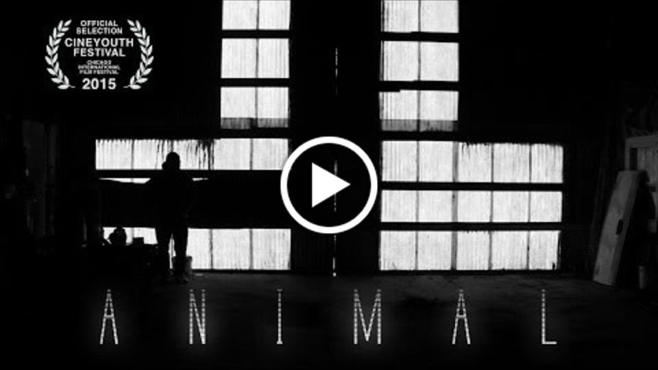 Animal - Silent Short Film by Will Jacobs (Chicago CineYouth Film Festival)