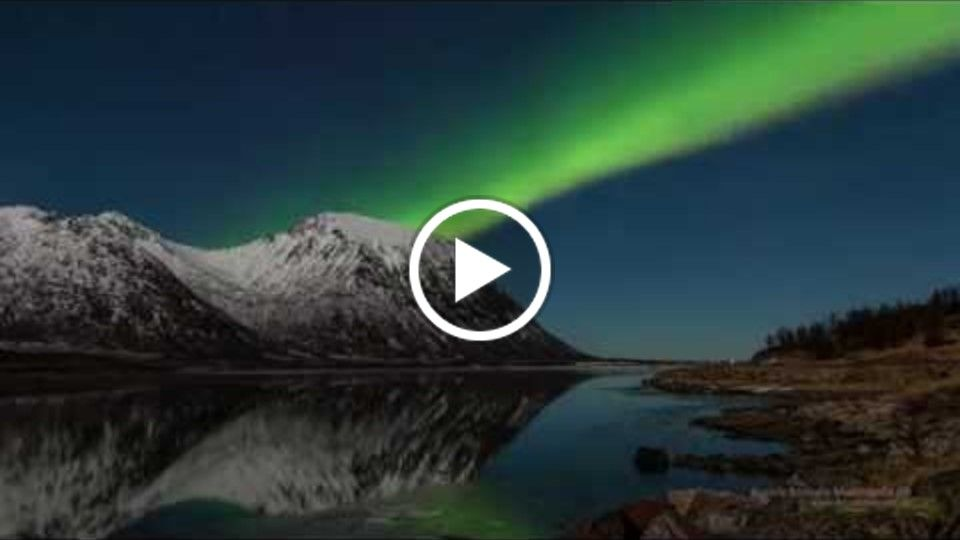 Northern Lights in Lofoten - Aurora Borealis in the Lofoten Islands -Norway