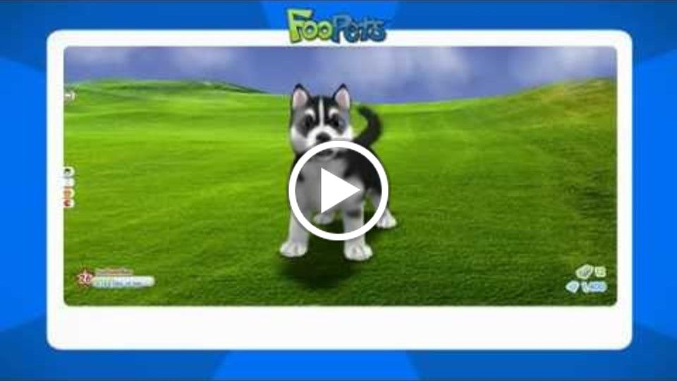 FooPets Informational Video for Parents