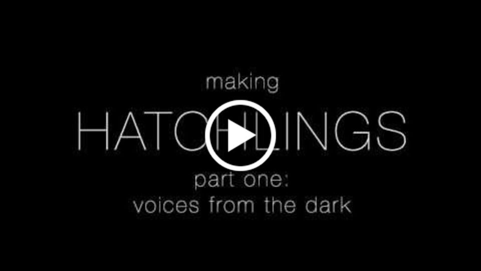 Hatchlings Fundraiser - Voices from the Dark