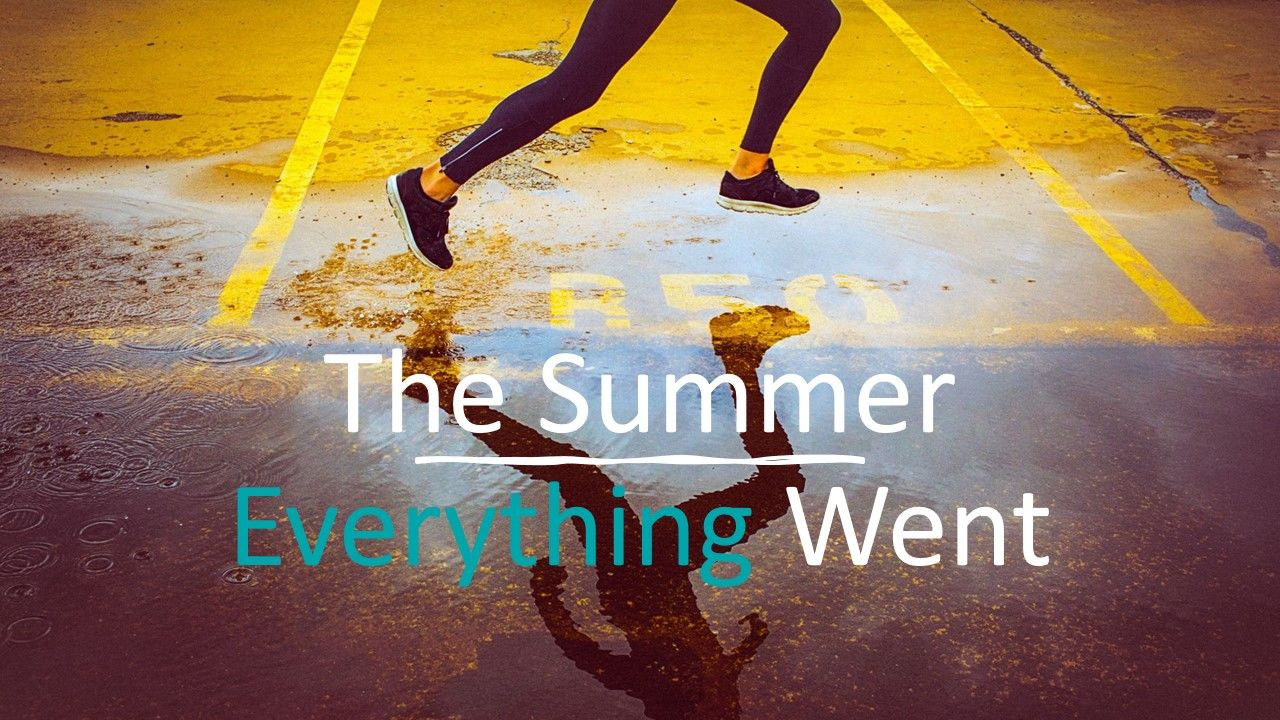 THE SUMMER EVERYTHING WENT