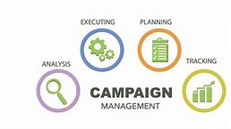 When to Bring On a Campaign Manager